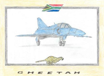 Denel Cheetah D